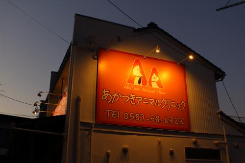 ファサード・壁面看板施工事例写真 愛知県 電球色の光は暖かい雰囲気を演出できますね