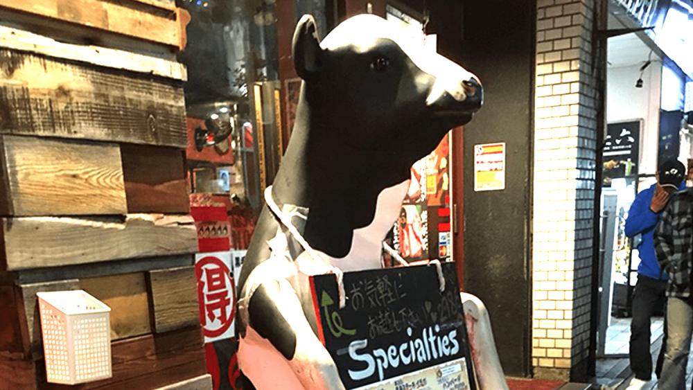 気になる看板見つけた!新人かわむら看板探検記「牛自らが看板に…!居酒屋さんのメニューボード」